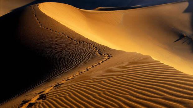 Пустыня Намиб Намибия Вот, где снимались основные сцены недавнего хита «Безумный Макс: Дорога ярости». Океан когда-то покрывал этот ныне засушливый, неумолимый ландшафт пустыни на юго-западе Африки. Песок, дюны и скалы — идеальный антураж для любого постапокалиптичного фильма. Поэтому сюда и стекается множество туристов, желающих лично прикоснуться к истории. Несмотря на мрачноватую атмосферу, здесь предпочитают тренироваться сэндбордеры, для которых высокие дюны — дом родной.