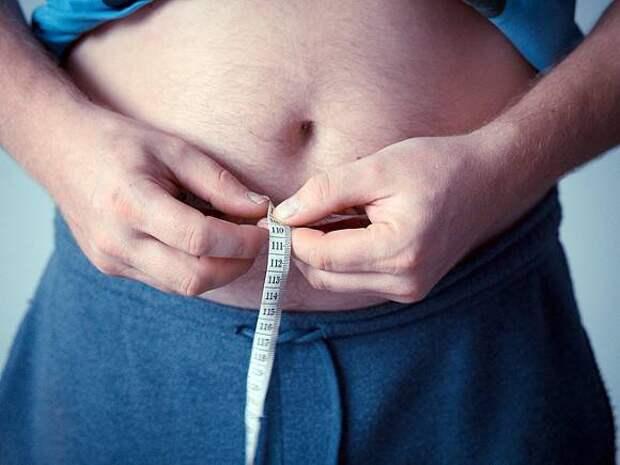 Диетологи составили рацион для желающих убрать жир на животе