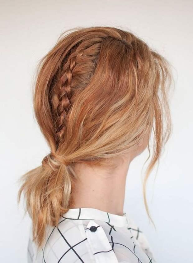Хвост или коса? (подборка)