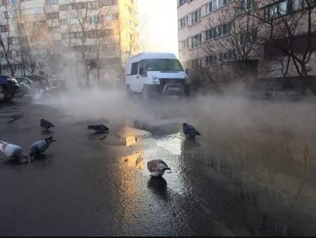Жители Фрунзенского района обвиняют в катастрофическом положении районного ЖКХ Константина Серова