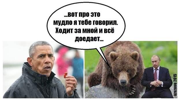 Обама доел за медведем лосося
