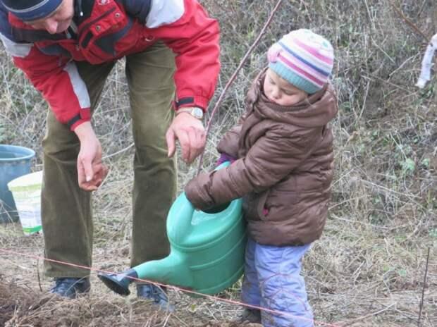 удобрение грядок: Органическое земледелие, пермакультура