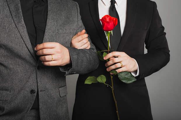 Швейцарские активисты поддержали референдум по однополым бракам