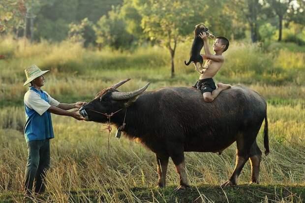 Сказочно красивый Таиланд