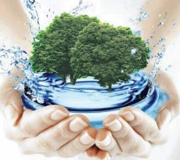 Крещенская вода и исполнение желаний.