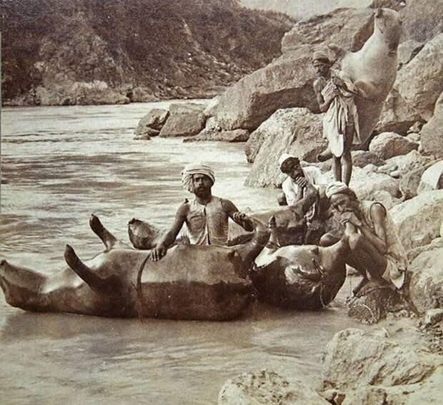 Надувные лодки из бычьих шкур, Северная Индия, 1900 г