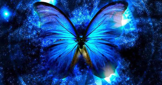 5 посланий, которые Вселенная отправляет вам через бабочек