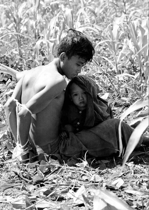 6. Вьетнамский ребенок цепляется за своего отца, который был задержан и связан, как подозреваемый в содействии партизанам Северного Вьетнама, 1966 год. исторические фотографии, история, фото