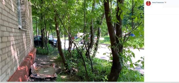 Во дворе на Академика Комарова огородили провал у дома