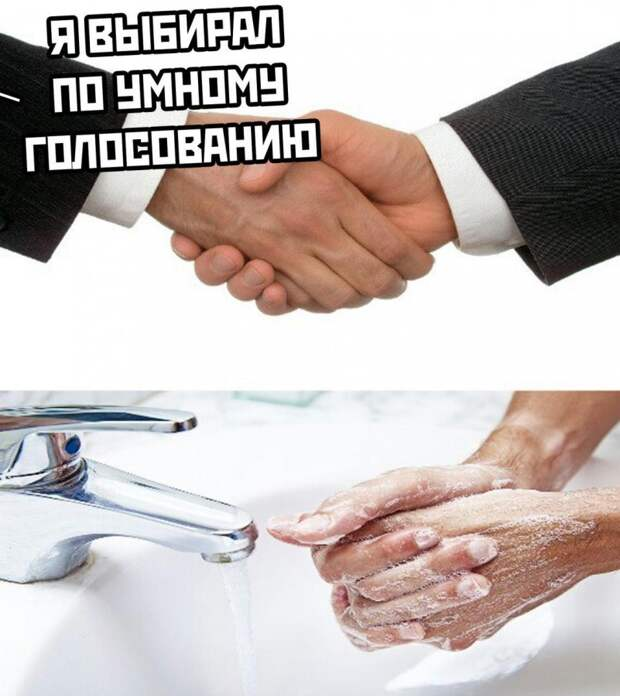 Ну хоть денег заработал: «Умное голосование» Навального потерпело крах