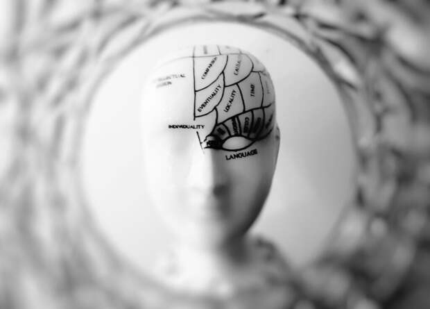_эволюция_человек-1024x735 Размеры человеческого тела и даже мозга зависят от климата и окружающей среды