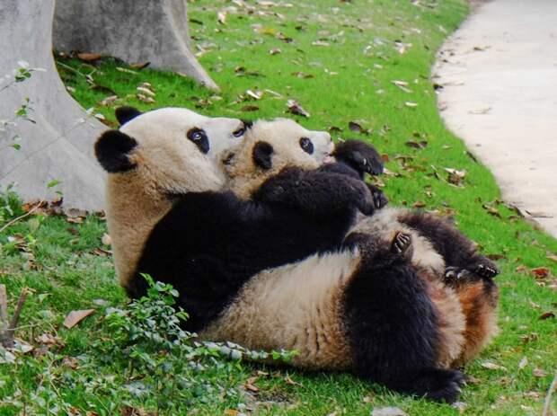 Chinatrip30 38 достопримечательностей, которые нужно посетить в Китае