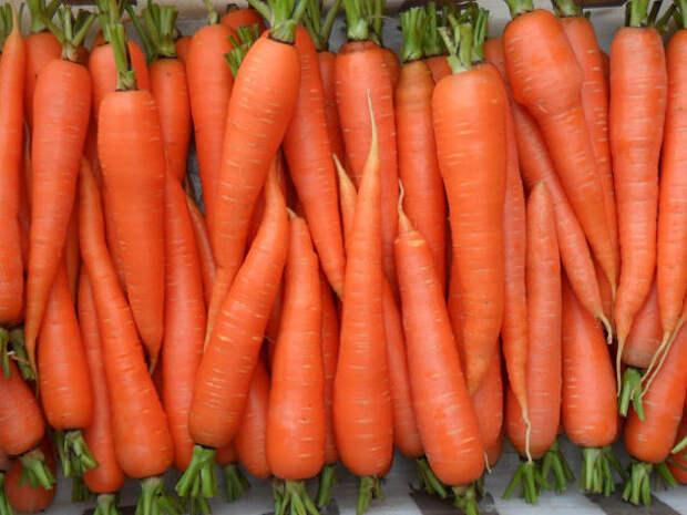 Что делать, чтобы свекла и морковь были сладкими?