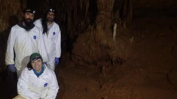 Испанские ученые объяснили, как древние люди освещали свои пещеры