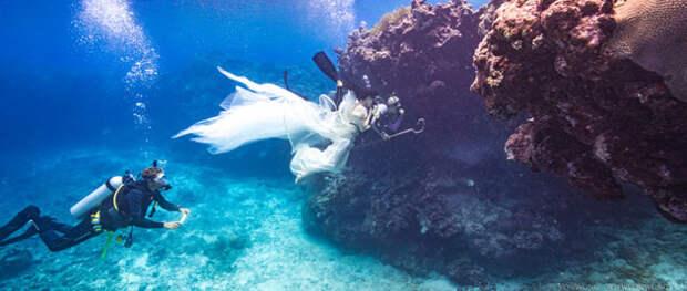 Фотосессия пастушки акул покорила интернет