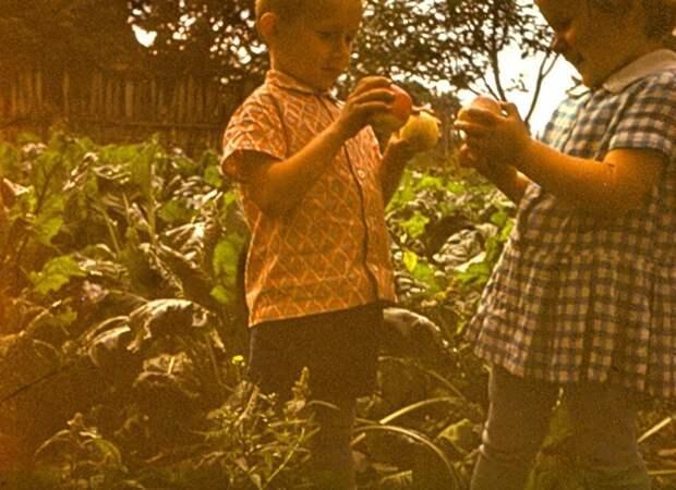 Картинки по запросу деревенские дети труд животные