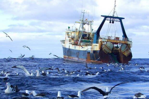 В Крыму поймали пьяных украинских рыбаков