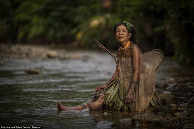 Коренной народ Индонезии