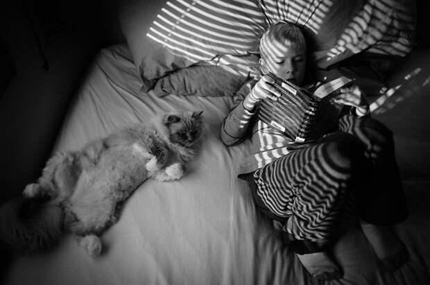 3 + 2. Дети и кошки на фотографиях Бет Манкузо