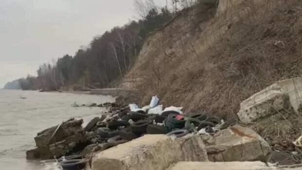 Мусорные заторы уничтожают реки Закарпатья