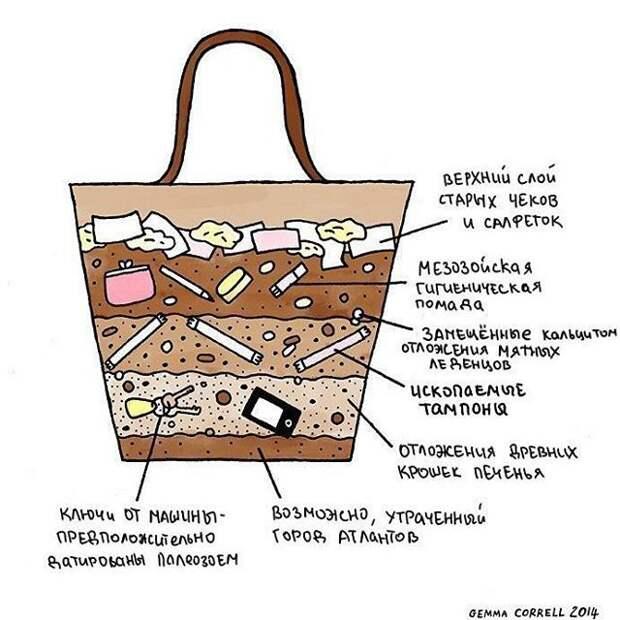 Так представляют содержимое женской сумки мужчины  девушки, женская сумочка, женщины, прикол, юмор