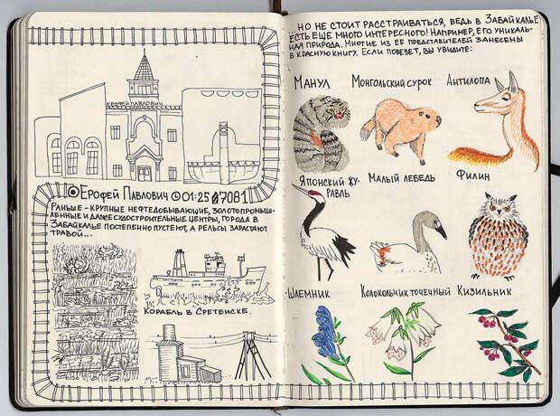 От Москвы до Владивостока: Путешествие через всю Россию в иллюстрациях
