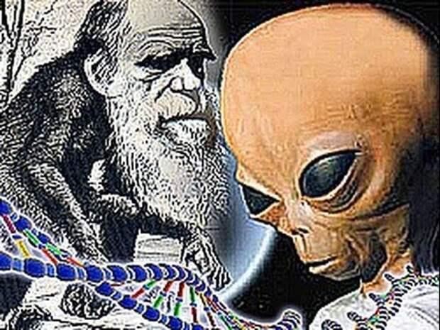Расы - разные виды. Мифы об эволюции человека