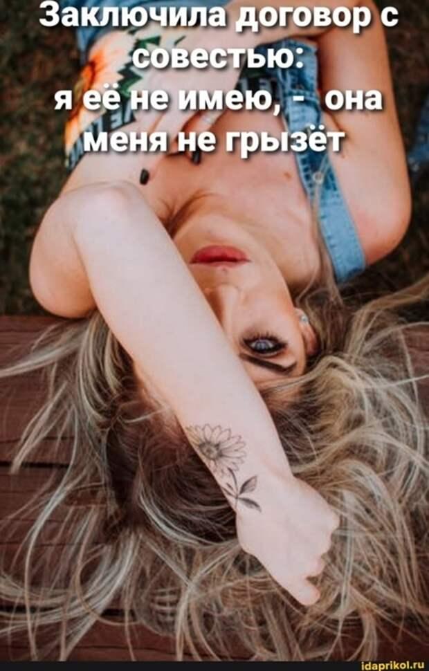 3085196_sovest (447x700, 208Kb)