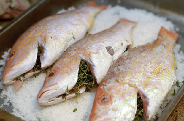 Как запекать рыбу в соли
