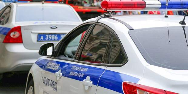 Полиция. Фото: mos.ru