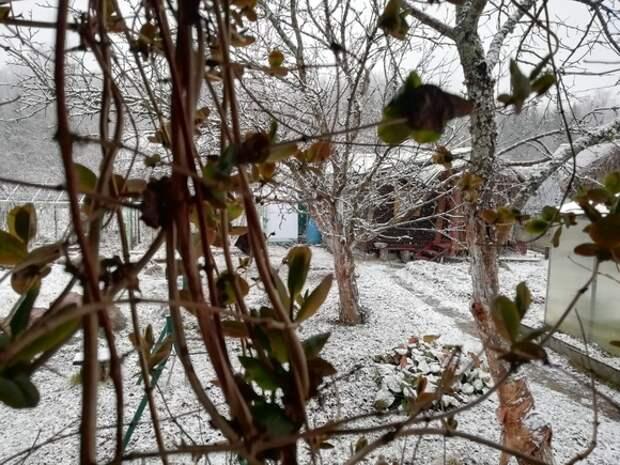 «Ничего себе весна!»: Ленобласть засыпало снегом