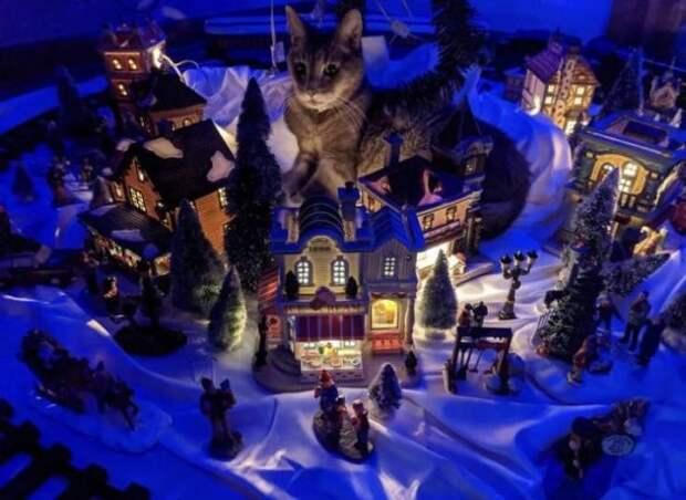 Кот лежит в новогодних украшениях
