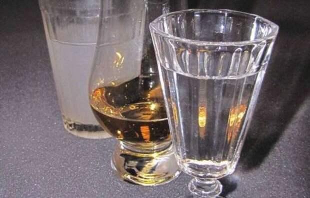 И разные, и похожие: в чем разница между самогоном и водкой