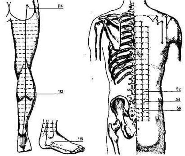 Можно ли предотвратить судороги в ногах