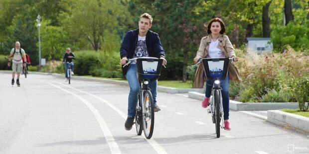 Велосипедисты. Фото: mos.ru