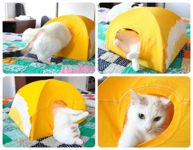 1210 Как сделать дом для кота