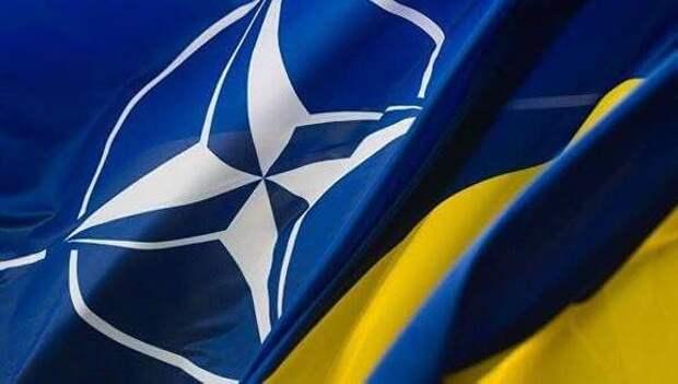 Дипломат Мельник призвал Германию добиться включения Украины в НАТО: «ФРГ несет особую историческую ответственность»