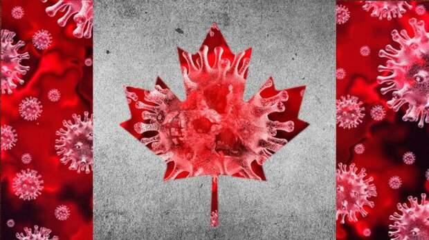 Corona-Canada-768x432