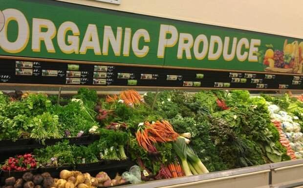 Безвкусные овощи и фрукты в США. Вся правда об органической продукции