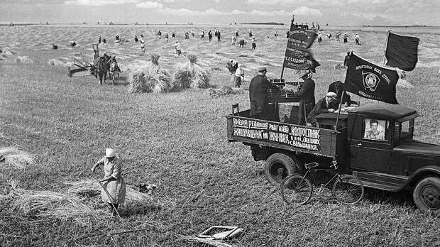 Чаще всего селькоры докладывали не о трудовых свершениях односельчан, а об имеющих место безобразиях