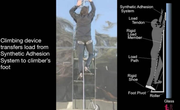 Присоски на руках В рамках проекта Z-Man американские военные ученые уже разработали специальные <a href=