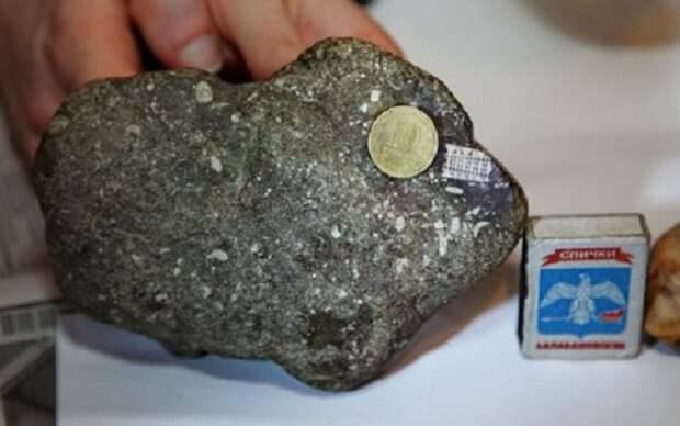 Найден камень с микрочипом возрастом 250 миллионов лет