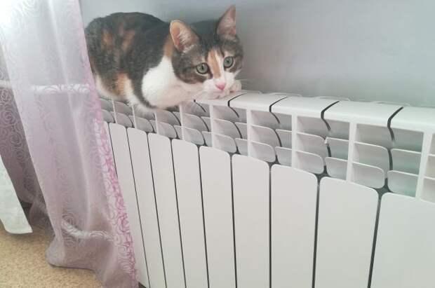 Как изменится порядок оплаты за отопление