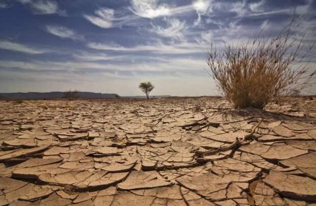 Почему человечество не в силах остановить климатическую катастрофу