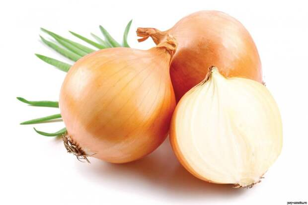 Лук. Без этого овоща невозможно представить большинство блюд. Однако в процессе переваривания лук выделяет эфир, который выходит через лёгкие, чем и провоцирует отвратительный запах изо рта. запах, продукты, факты, человек