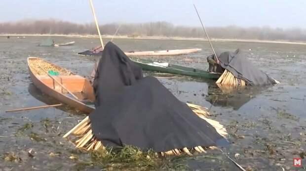 Видео: Необычные виды рыбалки, которые поражают своей самобытностью