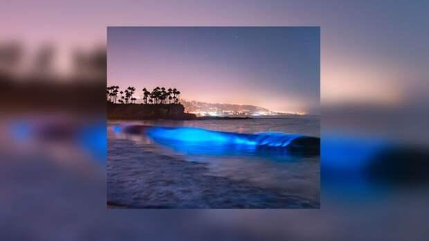 Фотограф из США заснял удивительное светящееся море (видео)