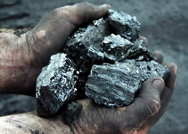 Иностранные фирмы готовы покупать уголь у ЛНР