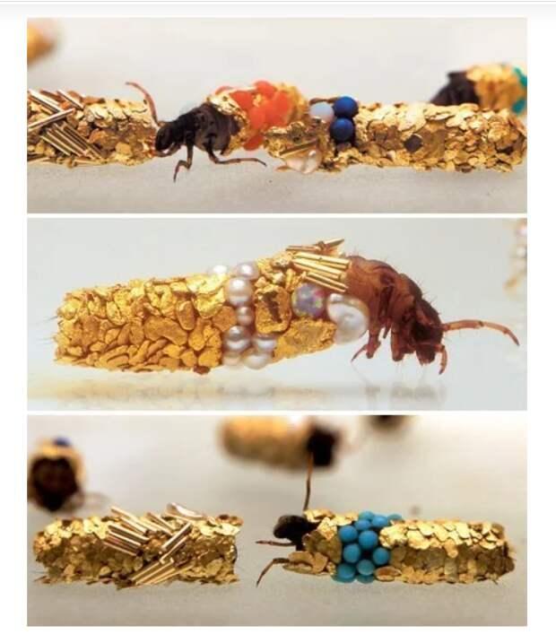 Ювелирка от насекомых
