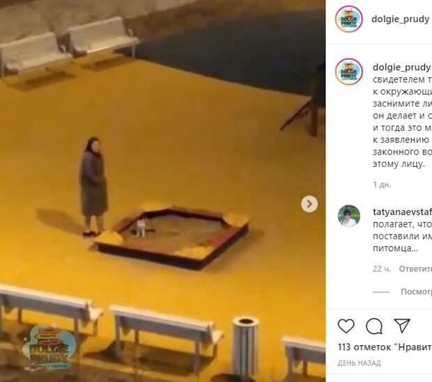 Жительница новостройки в Северном  принимает дворовую песочницу за кошачий туалет